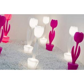 MyYour tulip light