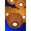 Wooden anging lamp